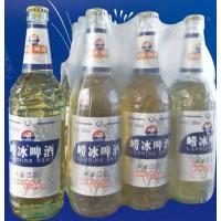 瓶装崂冰啤酒诚招代理商